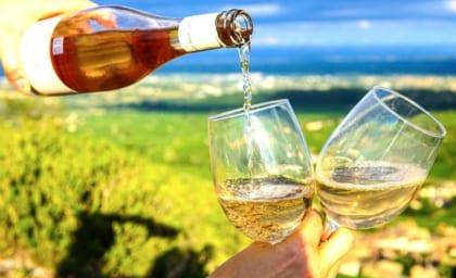 【ストアカ講座】<初心者向け>ワイン検定講師が教える!ワイン基礎講座〜白ワイン〜